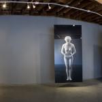 LA Contemporary, Los Angeles, 2009